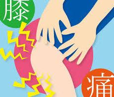 膝の痛み(4)鵞足炎とは?